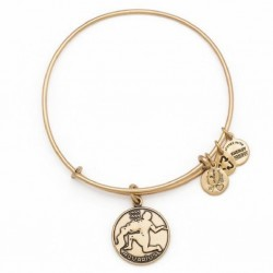 Pulsera de metal dorado con signo Aquarius de Alex and Ani - A13EB01AQRG