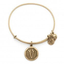 Pulsera de metal dorado de Alex and Ani - A13EB14VG